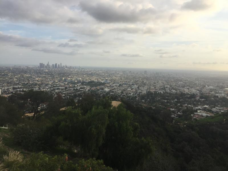 Los Angeles from Griffith Park during the day