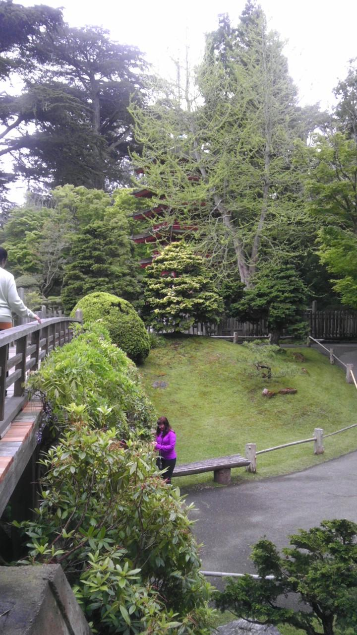 San Francisco Japanese Garden