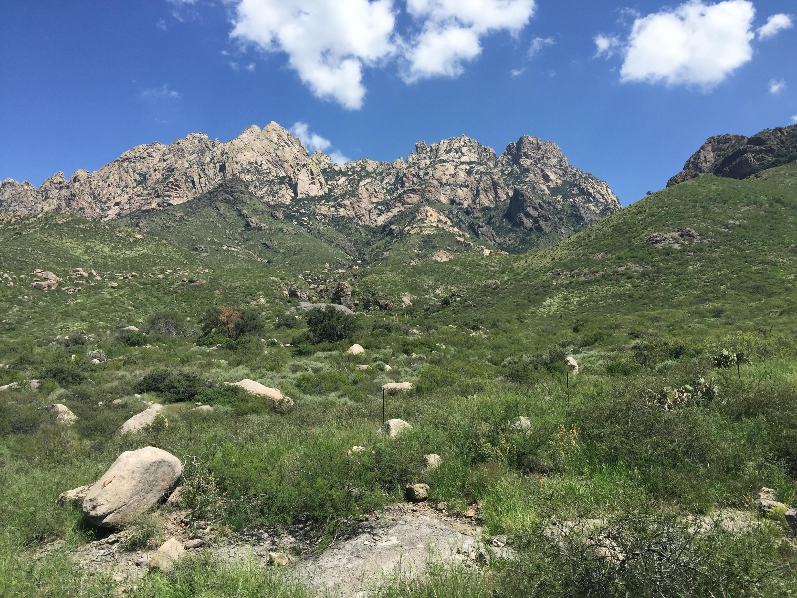 OpenNote: La Cueva Trail Organ Mountains