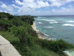 Diamond crater beach, narrow sand, great surf, good for surfers